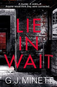 lie in wait, book, psychological thriller, author